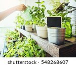 blank name plate sign on pot... | Shutterstock . vector #548268607