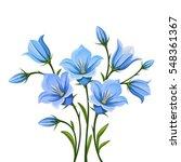 Vector Blue Bluebell Flowers...