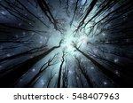 night in forest illustration.... | Shutterstock . vector #548407963