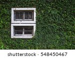 Old Wall With Window Overgrown...