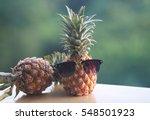 pineapple | Shutterstock . vector #548501923