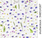 pattern with chamomile flowers  ... | Shutterstock . vector #548514187
