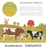 Cattle Farming Infographic...