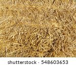 dry straw or hay close up...