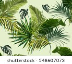 beautiful seamless vector... | Shutterstock .eps vector #548607073
