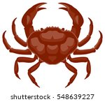 vector graphic illustration of... | Shutterstock .eps vector #548639227