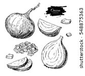 onion hand drawn vector set.... | Shutterstock .eps vector #548875363