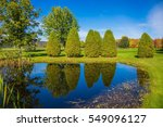 small quiet pond with water... | Shutterstock . vector #549096127