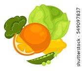 vector illustration of nature... | Shutterstock .eps vector #549097837