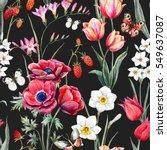 watercolor botanical spring... | Shutterstock . vector #549637087