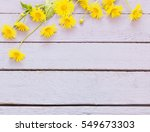 flowers on wooden background | Shutterstock . vector #549673303