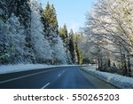 the winter road view with pine...   Shutterstock . vector #550265203