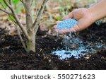 farmer hand giving chemical... | Shutterstock . vector #550271623