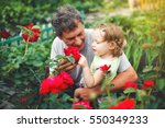 Stock photo cute little girl touching flower with grandfather in garden of roses 550349233