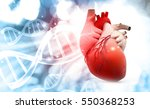 anatomy of human heart with dna ... | Shutterstock . vector #550368253