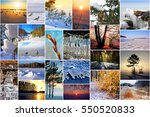 winter in nature  siberia ... | Shutterstock . vector #550520833