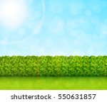 garden background vector | Shutterstock .eps vector #550631857