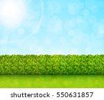 garden background vector | Shutterstock .eps vector #550631857