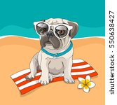 puppy pug in a glasses and with ... | Shutterstock .eps vector #550638427