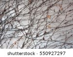 background  texture wall from... | Shutterstock . vector #550927297