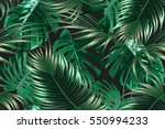 tropical palm leaves  jungle... | Shutterstock .eps vector #550994233