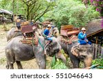 Group Of Mahouts  Elephant...