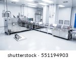 plant picture  clean room... | Shutterstock . vector #551194903