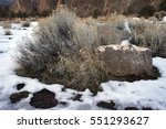 boulder and sage brush in snow | Shutterstock . vector #551293627