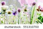 spring flowers | Shutterstock . vector #551310703