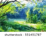 Watercolor Painting Of Summer...