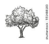 hand drawn vector illustration... | Shutterstock .eps vector #551488183