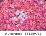 Background Of Bougainvillea...
