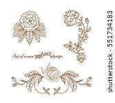 set hand drawn ornament of...   Shutterstock .eps vector #551734183
