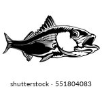 red snapper isolated on white... | Shutterstock .eps vector #551804083