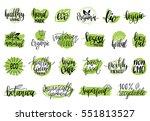vector eco  organic  bio logos... | Shutterstock .eps vector #551813527