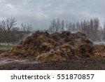 horse manure pile | Shutterstock . vector #551870857