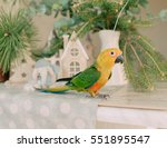 Large Parrot With A Yellow Head