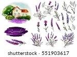 big lavender illustration set....   Shutterstock . vector #551903617