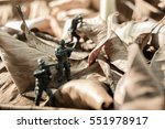 miniature war toy soldiers with ... | Shutterstock . vector #551978917