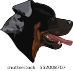 rottweiler dog head. global... | Shutterstock .eps vector #552008707