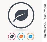 leaf icon. fresh organic... | Shutterstock .eps vector #552079303