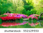 beautiful flowers and their...