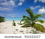 antigua beach with tropical...   Shutterstock . vector #552222217