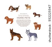 dog breed silhouette colorful... | Shutterstock .eps vector #552225547