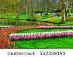 Colorful Tulips And Hyacinth...