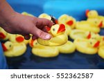 woman catches duck from many... | Shutterstock . vector #552362587