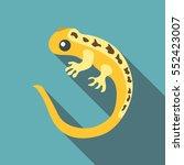 yellow lizard icon. flat...   Shutterstock .eps vector #552423007