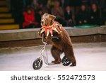 circus bear on speech. | Shutterstock . vector #552472573