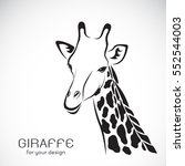 vector of a giraffe head on... | Shutterstock .eps vector #552544003