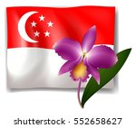 Purple Orchid And Singapore...